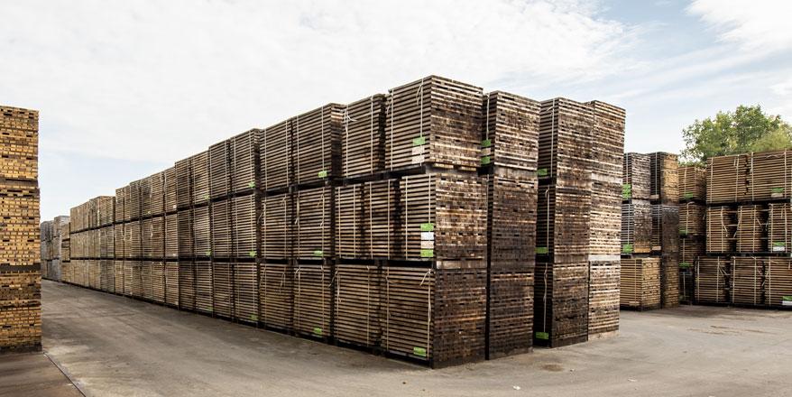 Parque de madera de roble para su curado